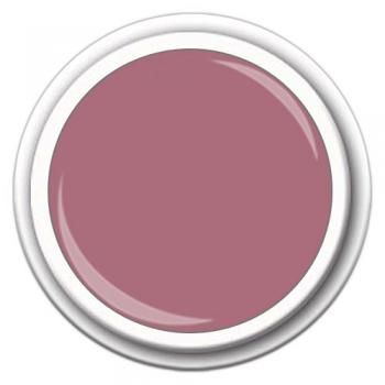 Colour FG-05N Taupe Plum 5g