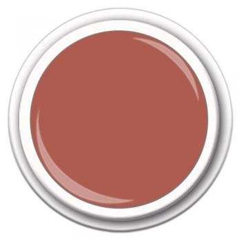 Colour FG-11 Nude Lachs 5g