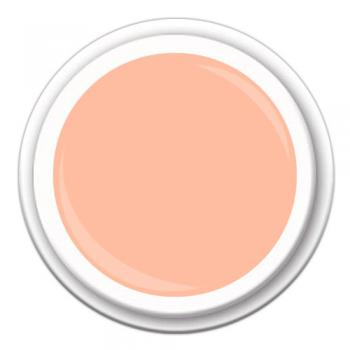 SPEED COLOR FINISH Neon Pastell Peach  CF-27 5g